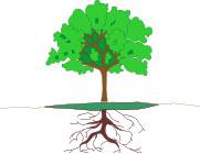 illus-arbre