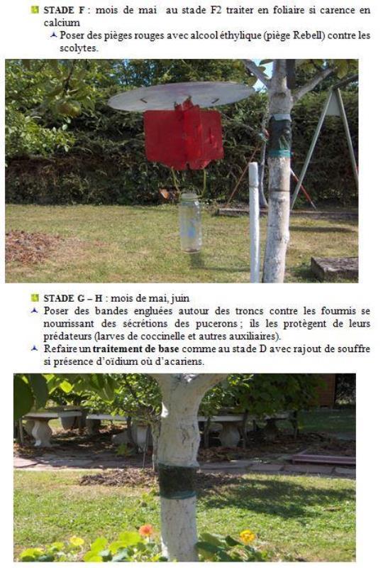 livre_arbo_1_6